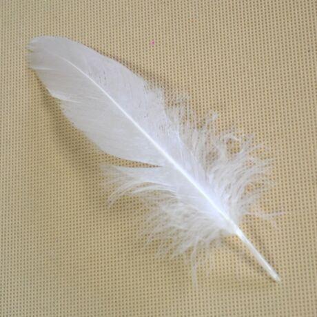 Színes puha libatoll, fehér (10 db)