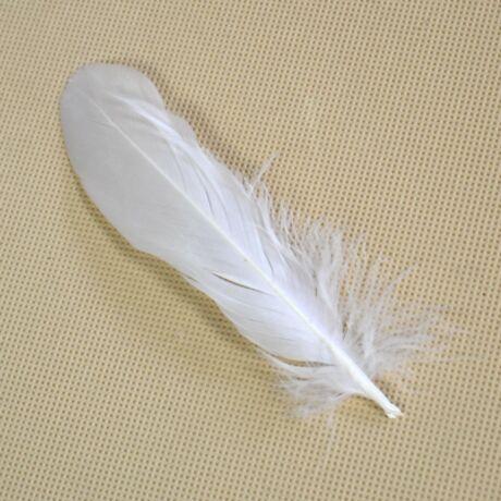 Színes kemény libatoll, fehér (10 db)